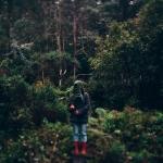 Photography Tips – Travel Photography. Captivating Tasmania